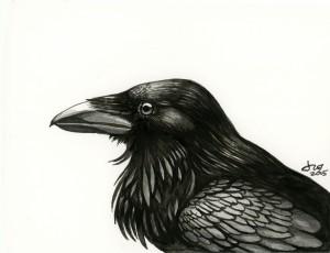 Morg's Raven
